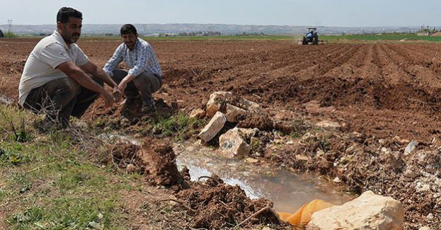 """Hibe desteği genç çiftçilere """"umut"""" oldu"""