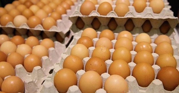 Türkiye, Avrupa'daki yumurta krizini izlemeye aldı