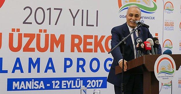 Bakan Fakıbaba çekirdeksiz kuru üzüm rekoltesini açıkladı