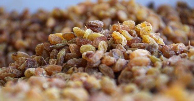 Okullarda 6 milyon öğrenciye 4 bin 200 ton üzüm dağıtılacak