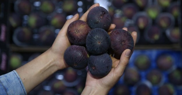 Çinlilerin kiraz ve siyah incire ilgisi artıyor