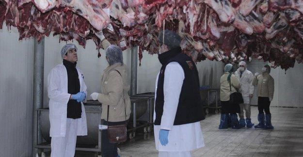 Tarım ve Orman Bakanlığı 'ürün bazlı' gıda denetimlerine başladı
