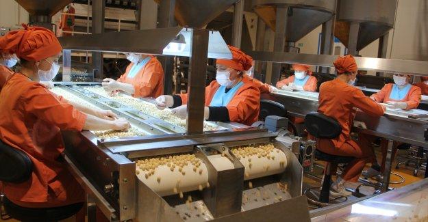 Türkiye'nin fındık ihracatında rekor hedefleniyor