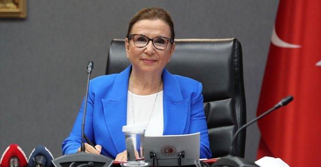 Bakan Pekcan: Türkiye'nin e-ticaret hacmi yılın ilk 6 ayında 91,7 milyar lira olarak gerçekleşti