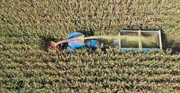Türkiye'nin 8 aylık ihracatına tarım sektörü damgası