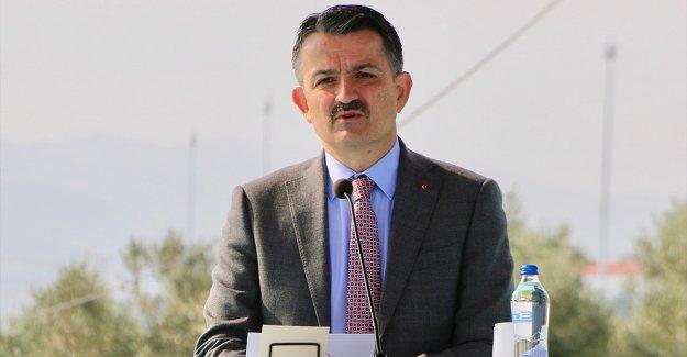 Tarım ve Orman Bakanı Pakdemirli: Çiğ süt destekleme ödemesi bugün yapılacak