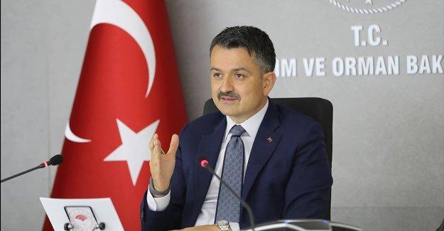 Tarım ve Orman Bakanı Pakdemirli: Kırsaldaki dinamizmi hep birlikte daha çok enerjiye çevireceğiz