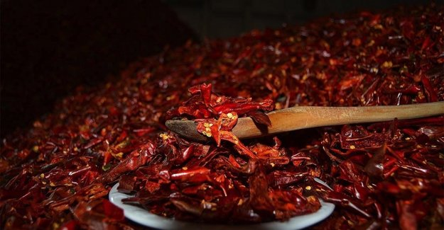 Pul biberimiz 100 ülkede yemekleri lezzetlendirdi