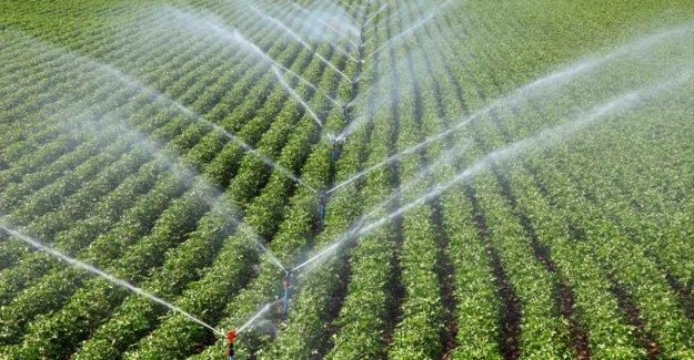 Bireysel sulama sistemleri yatırımları da kırsal kalkınma desteklerinden yararlandırılacak