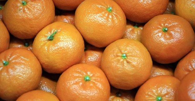 Ocakta fiyatı en fazla artan ürün mandalina, en çok düşen ise karnabahar oldu