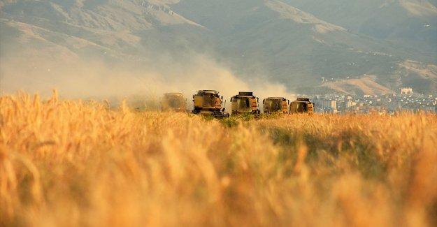 Tarım Kredi bu yıl 3,7 milyar liralık ürün alacak