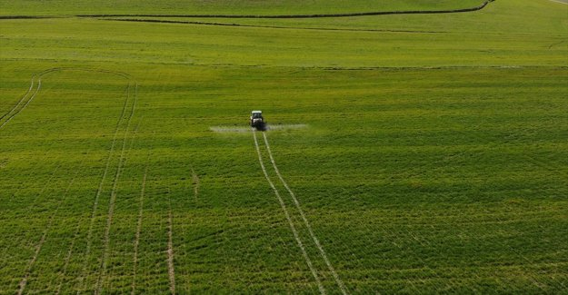 Tarım ÜFE şubatta aylık bazda yüzde 2,61 arttı