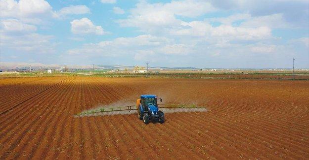 Şanlıurfa'da pamuk tohumları toprakla buluşuyor