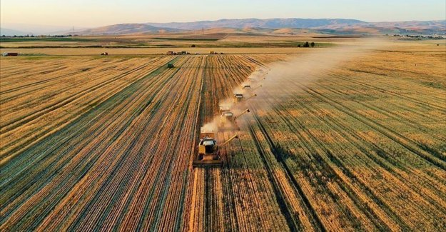 Tarım ve Orman Bakanlığı sağladığı desteklerle organik üretim ve tüketimi artırıyor