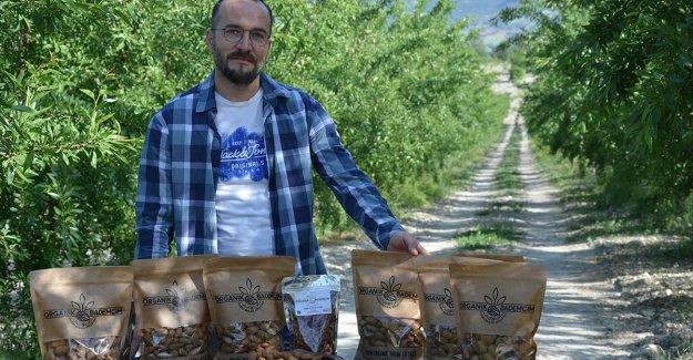 Manisa'da devlet desteğiyle tarlasına badem fidanı diken üretici ihracata başladı
