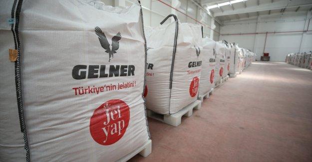 Türkiye'nin helal jelatin ve kolajen sektörü yeni yatırımlarla büyüyor