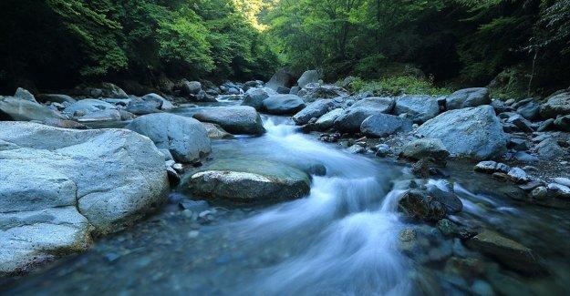 Enerjide yaşamın kaynağı suya talep artıyor