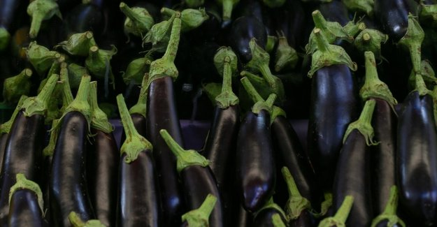 Temmuzda fiyatı en fazla artan 'yurt içi turlar', en çok düşen 'patlıcan' oldu