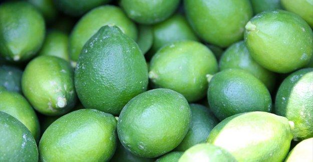 Hasadına başlanan limonda hedef 500 bin tondan fazla ihracat