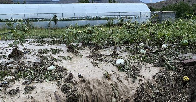 İklim değişikliği tarım sigortalarını kaçınılmaz kılıyor