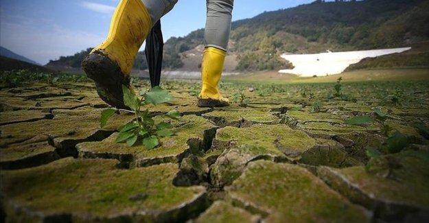 İklim değişikliğinin sağlık üzerindeki etkileri 'hiç durmadan' artıyor