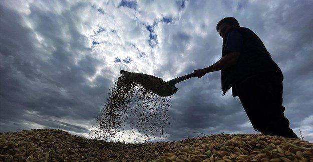 Tarımsal desteklerde vergi iadesiyle 2 milyon çiftçiye yaklaşık 5 milyar lira ödenmesi bekleniyor
