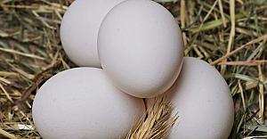 Zehirli yumurtada çete parmağı